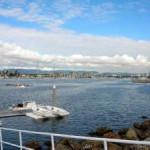 sailing_sunny_day